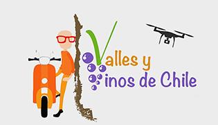 Valles y Vinos de Chile