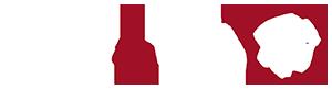 Canal Del Vino Logo - canaldelvino.tv